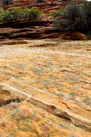 Colorful Sandstone