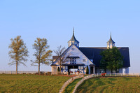 Lexington Horse Farm-0568